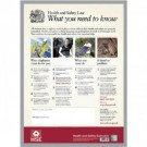 Stewart Superior Health and Safety Law HSE Statutory Poster PVC W420xH595mm A2 Framed Ref FWC100